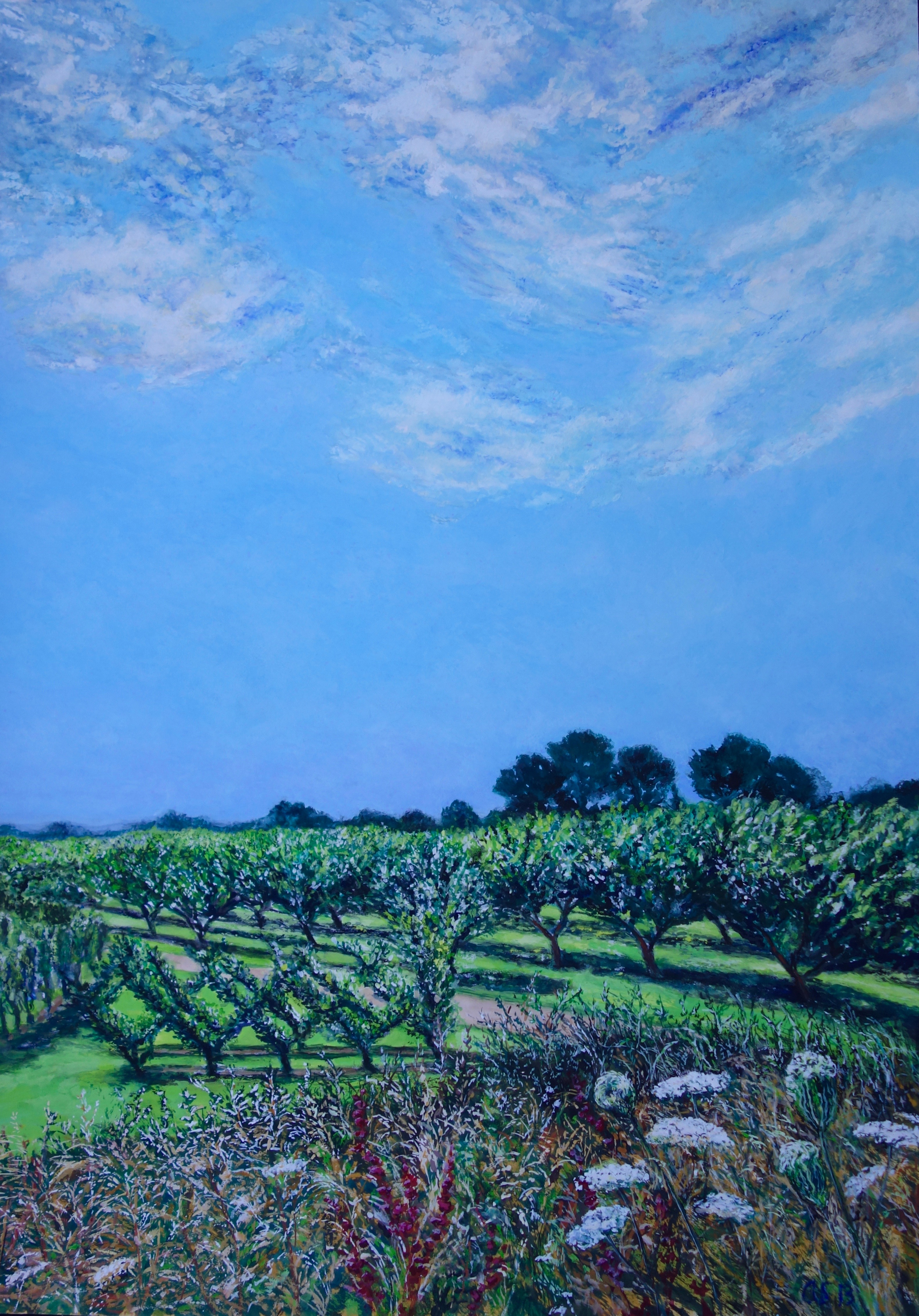 RHS Wisley Apple Orchard: Gouache